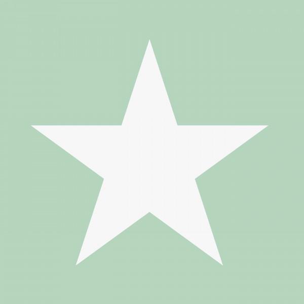 Tapete Sterne groß Mint